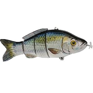 Animated Lure American Shad Specialty